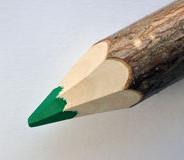 Zielony ołówek (2)